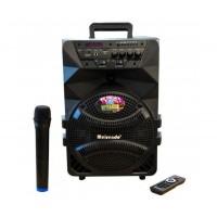 8 Тонколона с вграден акумулатор, МП3 плейър от SD карта и флашка, Блутут и безжичен микрофон за караоке Meirende MR-218A
